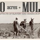 40 acres and a mule, Black History, Black History 365, Reparations, freedmen, reconstruction, abolition movement, Buy Black Movement